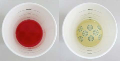 (左)血尿 (右)正常尿